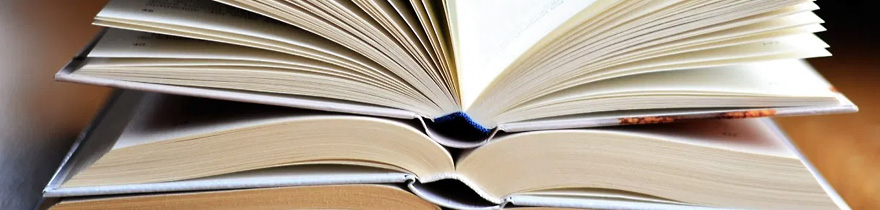 Veranstaltung: Präsentation neuer Fachbücher: Appetit auf Lektüre? – Literatur häppchenweise!